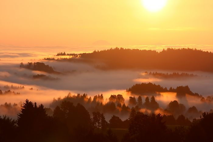 Sunrise over Fog